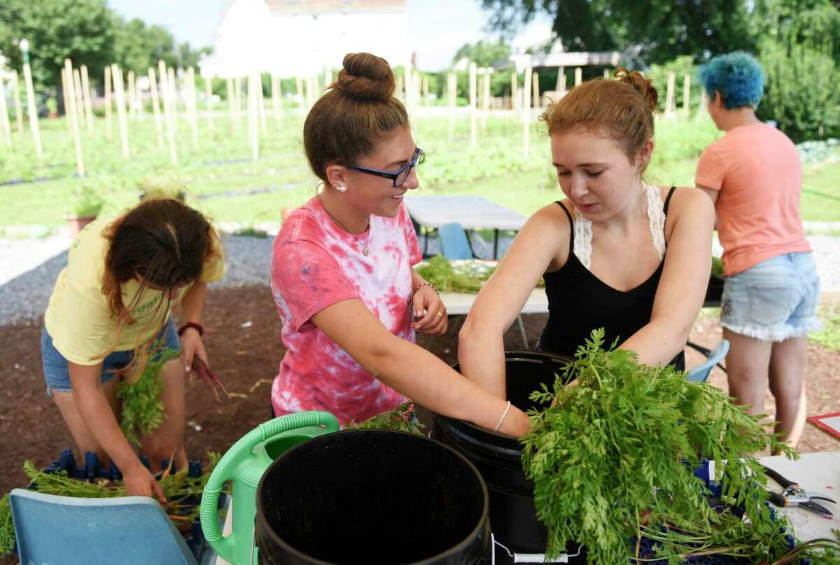 Westhill High School rising juniors Grace Chasanoff, left, and Caroline Klumac wash heirloom carrots after harvesting them at Fairgate Farm in Stamford, Conn. Wednesday, July 17, 2019. Several students are working over the summer at Fairgate Farm to gain relevant work experience with their school studies.