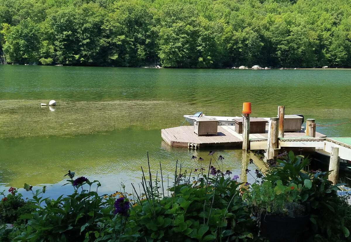 Eurasian milfoil continues to be a problem for residents living near Squantz Pond State Park in New Fairfield and Sherman.