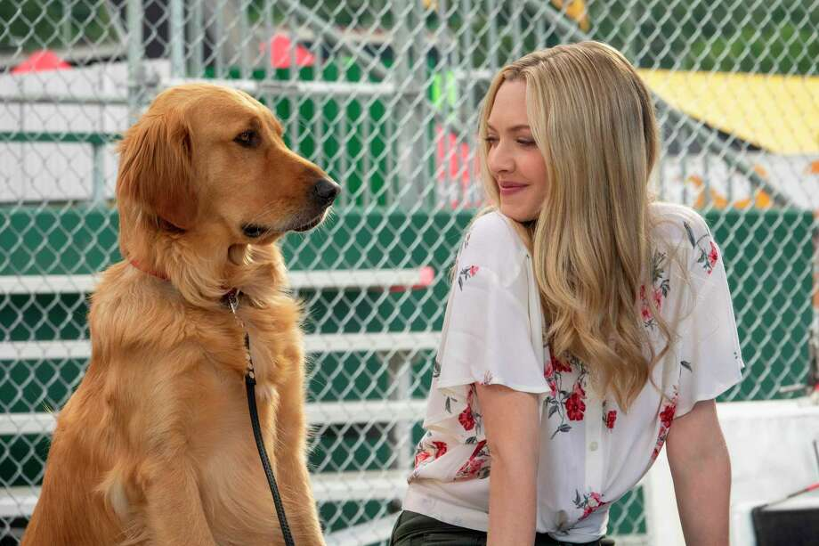 """This image released by Twentieth Century Fox shows Amanda Seyfried in a scene from """"The Art of Racing in the Rain."""" (Doane Gregory/Twentieth Century Fox via AP) Photo: Doane Gregory / © 2019 Twentieth Century Fox Film Corporation. All rights reser"""