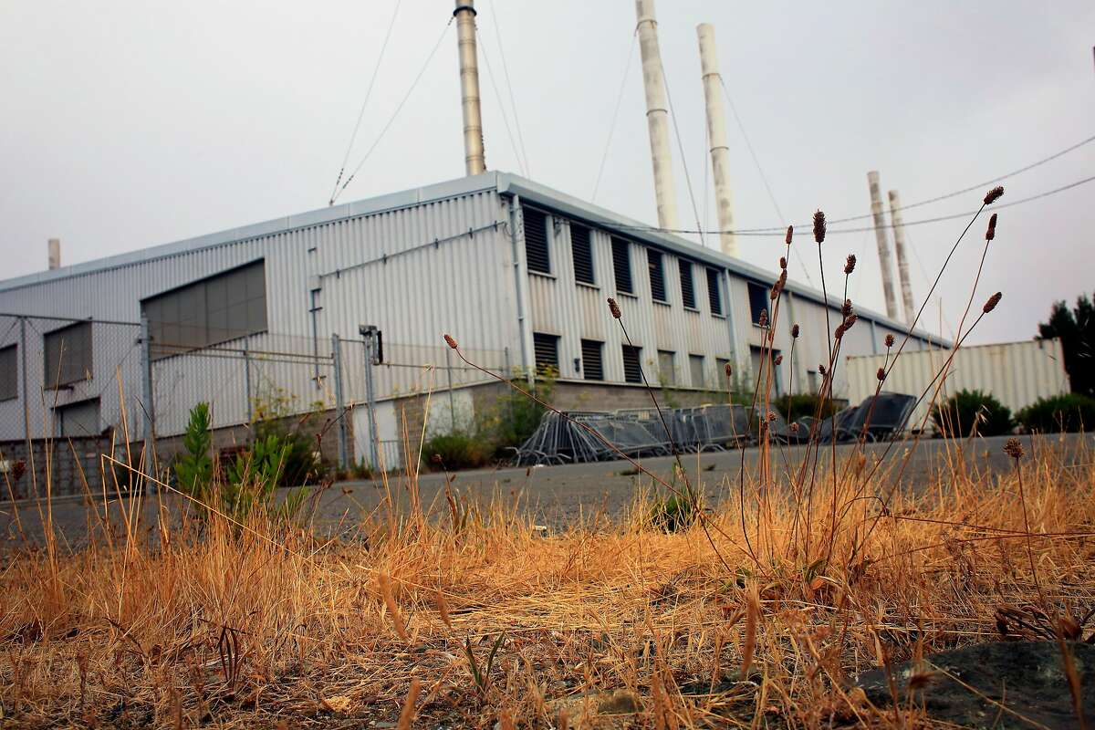 Foliage is seen behind Building 606 at the former Hunters Point Naval Shipyard on Wednesday, July 25, 2018 in San Francisco, Calif.