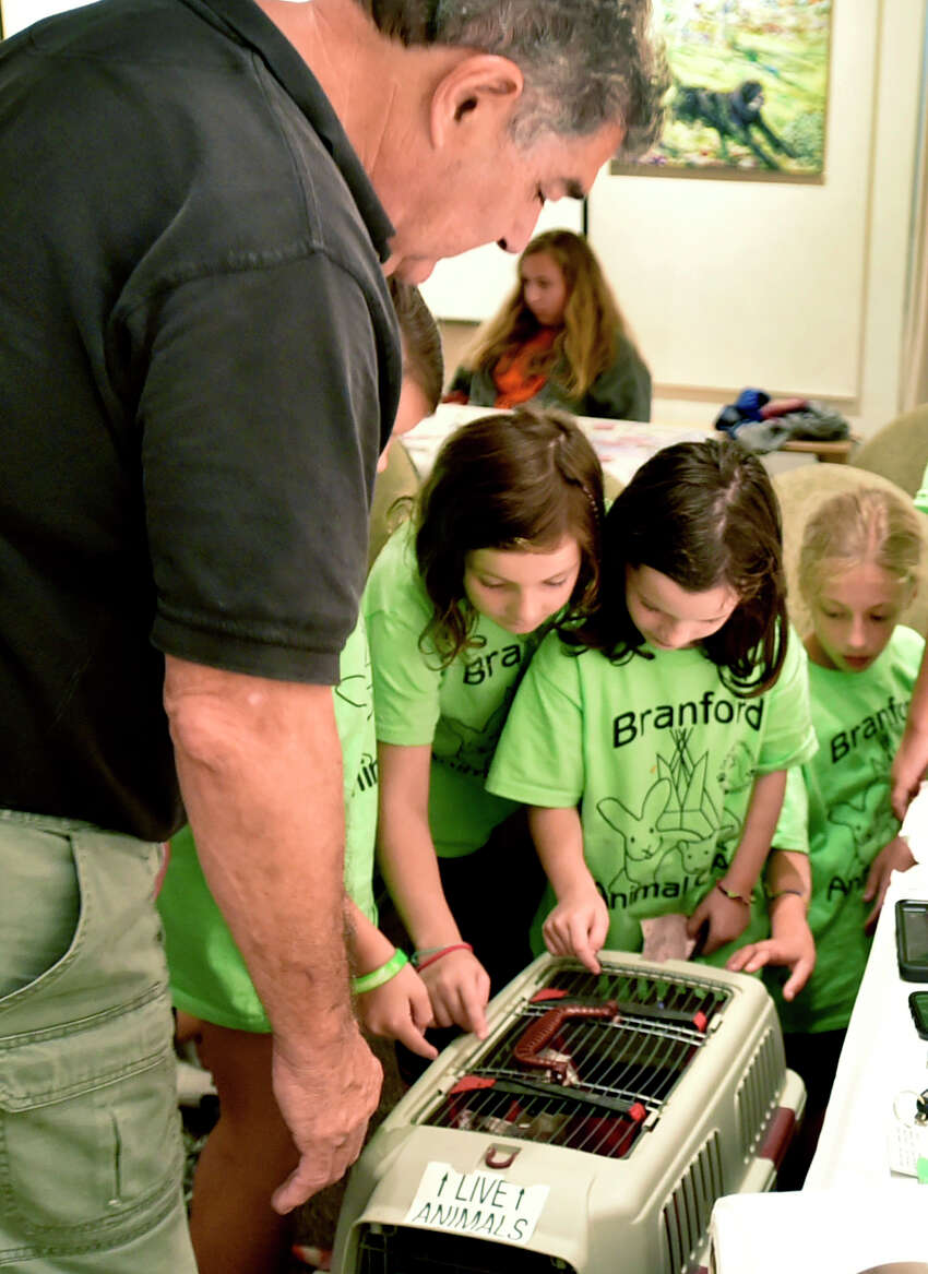 Branford, Connecticut - Tuesday, August 13, 2019: Campers look at small animals during the Branford Animal Camp that hosted the interactive educational program by Ron DeLucia, left, and his son Patrick DeLucia and their Curious Creatures of Branford for the Branford Animal campers Tuesday afternoon at the Willoughby Wallace Library in Stony Creek. The program included a close touch and feel with a Chinchilla, Hedgehog, Guinea Pig, Skunk, Ferret, Alligator, Boa Constrictor, Ball Python and an Alligator. The Branford Animal Camp provides an educational program that allows children to interact and learn about different animals, how to protect them, and develop an appreciation for the environment while playing outdoors. The camp has sessions for children aged 6-11 and 4-6.
