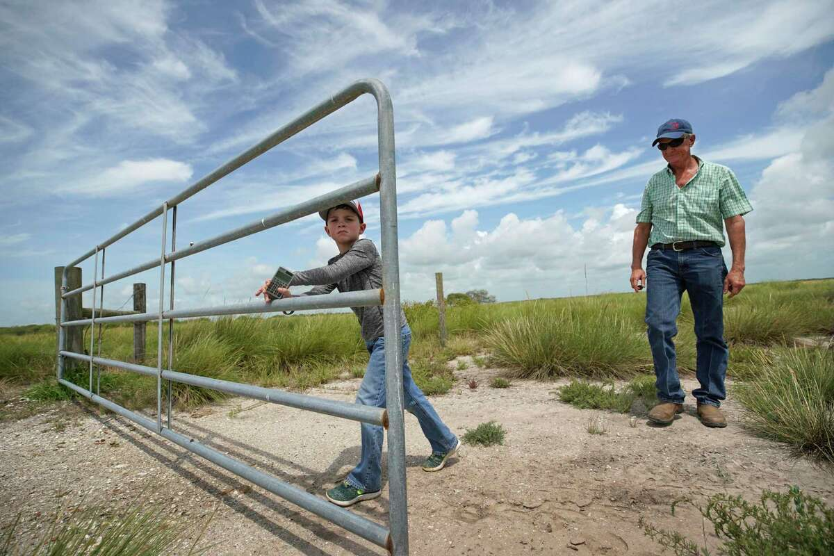Herff Cornelius watches as his grandson, Wyatt Cornelius, 7, closes a gate on the family's coastal land Tuesday, July 16, 2019, in Sargent. He hopes the new Texas Coastal Exchange program will help to protect the land for future generations. During the winter months his cattle graze on the land.