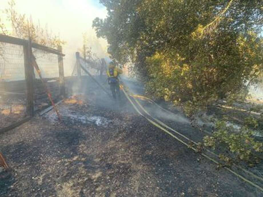 A fire that broke out at Hanns Park in Vallejo forced evacuations along Creekview Drive Tuesday afternoon. Photo: Vallejo Fire