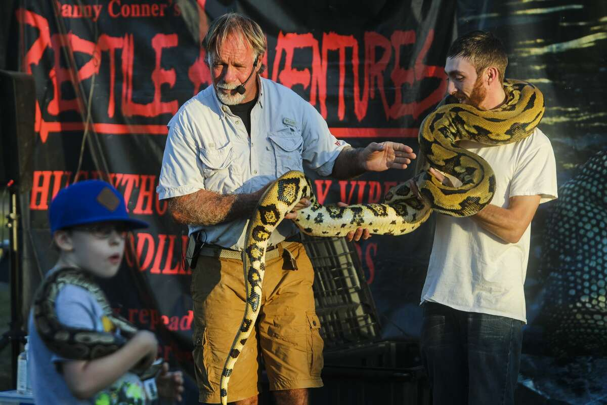 Danny Conner, left, passes a 6-year-old reticulated python called Juanita over to Zach Stevens of Midland, right, during Conner's Reptile Adventures show on Tuesday, Aug. 13, 2019 at the Midland County Fair. (Katy Kildee/kkildee@mdn.net)