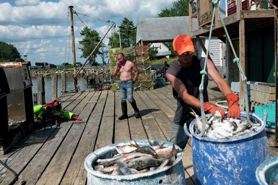 Albert Rose, owner of Allen's Seafood, talks on the phone while fishermen unload their catch last month in Harpswell, Maine. With a median age of 57, Harpswell is the oldest town in the oldest state, by population. Photo: Washington Post Photo By Marlena Sloss / The Washington Post