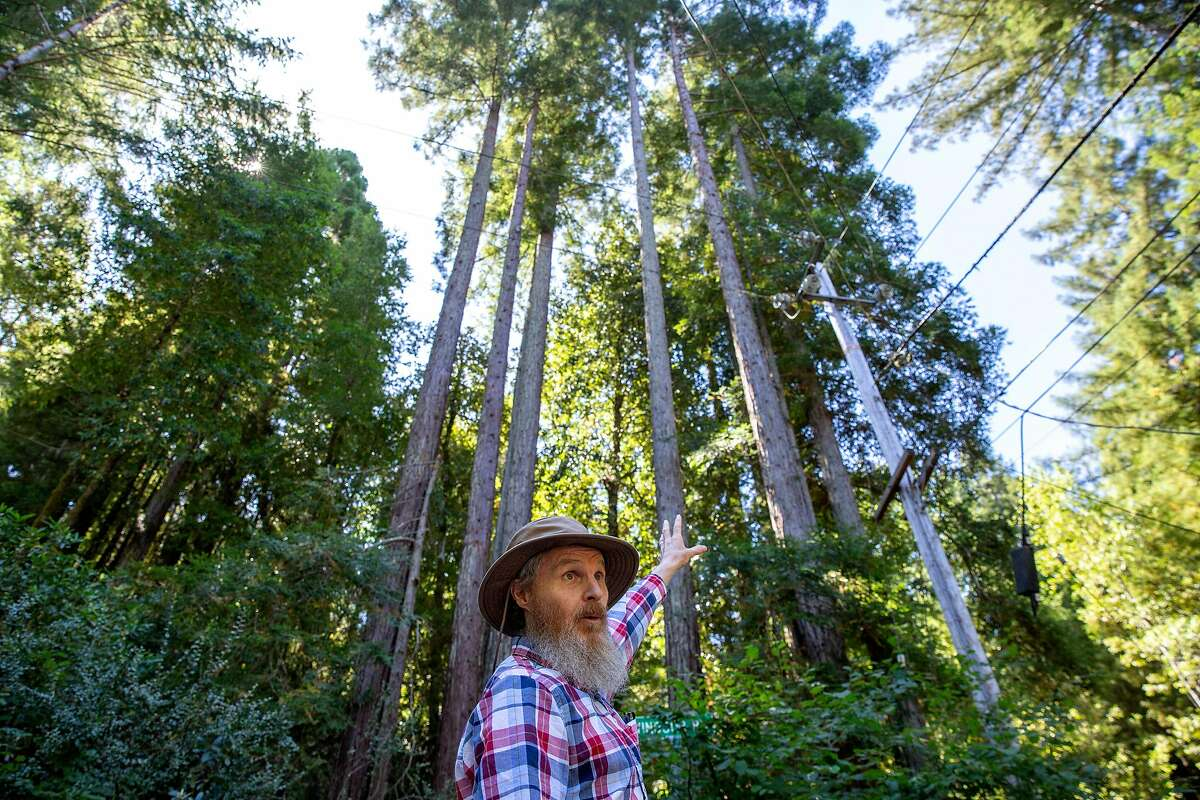 Richard Seamen points to the area where trees were cut down on Wednesday, Aug. 7, 2019, in Camp Meeker (Sonoma County), Calif. PG&E is cutting down trees near lines to reduce fire danger. Camp Meeker residents are upset that the crews are cutting down and limbing too many redwoods.