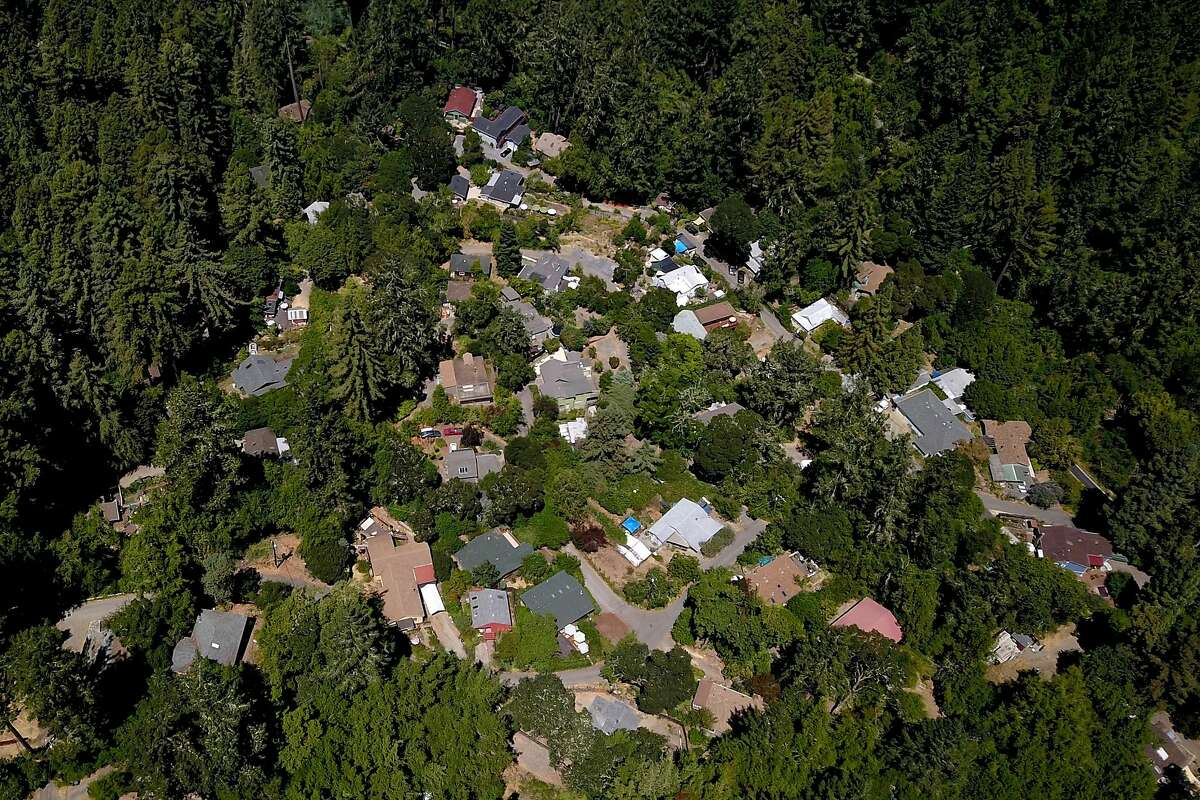 Camp Meeker (Sonoma County) on Wednesday, Aug. 7, 2019, in Calif. PG&E is cutting down trees near lines to reduce fire danger. Camp Meeker residents are upset that the crews are cutting down and limbing too many redwoods.