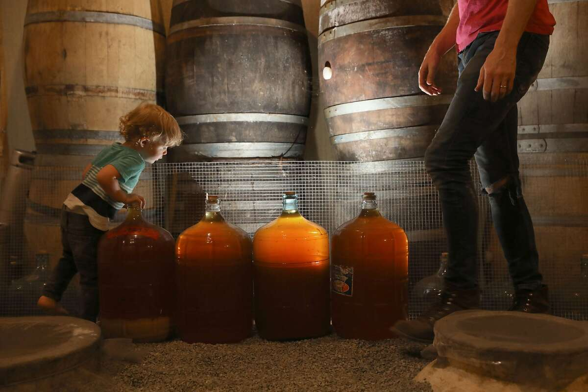 Winemaker Caleb Leisure (right), who makes wine in clay vessels imported from the Republic of Georgia, has some of his wines in demijohns seen as his two year old son Henry Leisure (left) takes a look Coturri Wine on Tuesday, Aug. 13, 2019, in Glen Ellen, Calif. The one on left is 2018 Verso and the other three on right are 2018 Mother Knows.