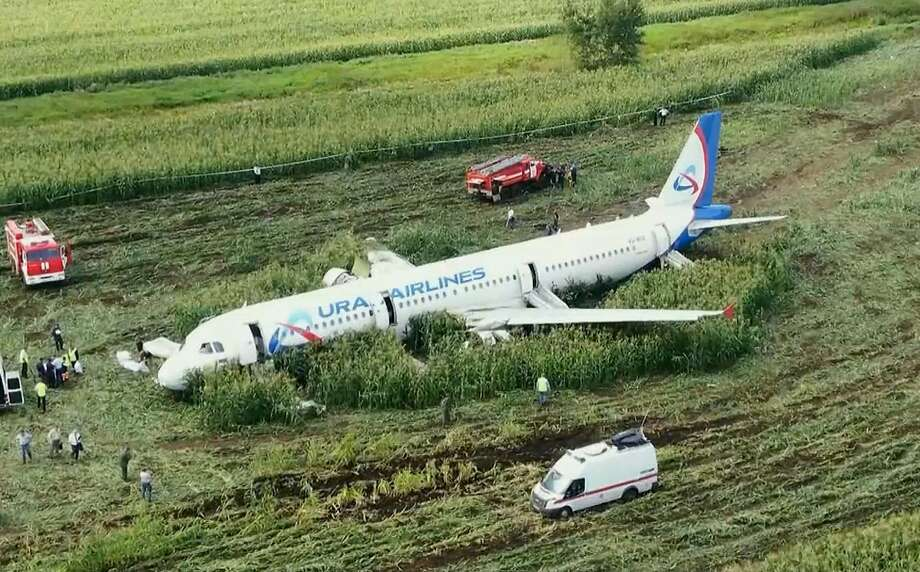 A Ural Airlines' plane landed in a corn field outside Moscow after it collided with a flock of gulls after takeoff, causing both engines to malfunction. Photo: Associated Press