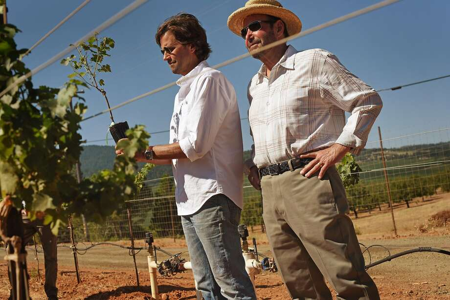 Andy, right, and David Beckstoffer at Beckstoffer's Amber Knolls North Vineyard preparing to plant one of a variety of cabernet vines in order to test which specific plants are best for a warming climate in Kelseyville, California. August 15, 2019. Photo: Erik Castro / Special To The Chronicle