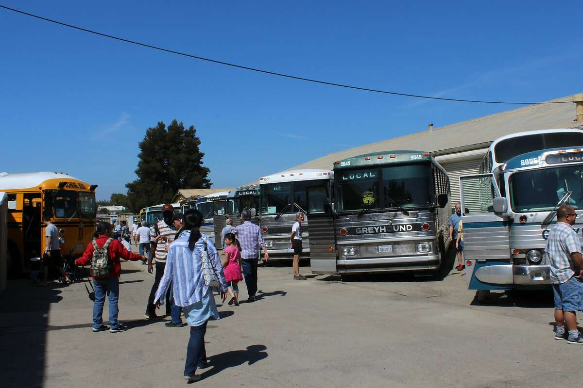 Patrons of the Pacific Bus Museum in Fremont, California saunter amount the buses on display during the museum's annual open house fund-raising event on August 18, 2018.