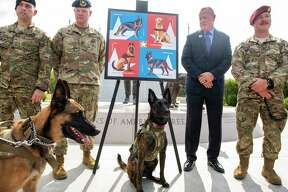Master Sargent Steven Kaun, left, and Major Matthew Kowalski, the 28th Postmaster of San Antonio, Robert Car Jr., and Master Sgt. Rudy Parsons of the Kentucky Air National Guard looks at Callie, center, the only search and rescue dog in the Department of Defense participate during a stamp unveiling ceremony honoring military working dogs at Joint Base San Antonio-Lackland on Thursday, August 15th, 2019.