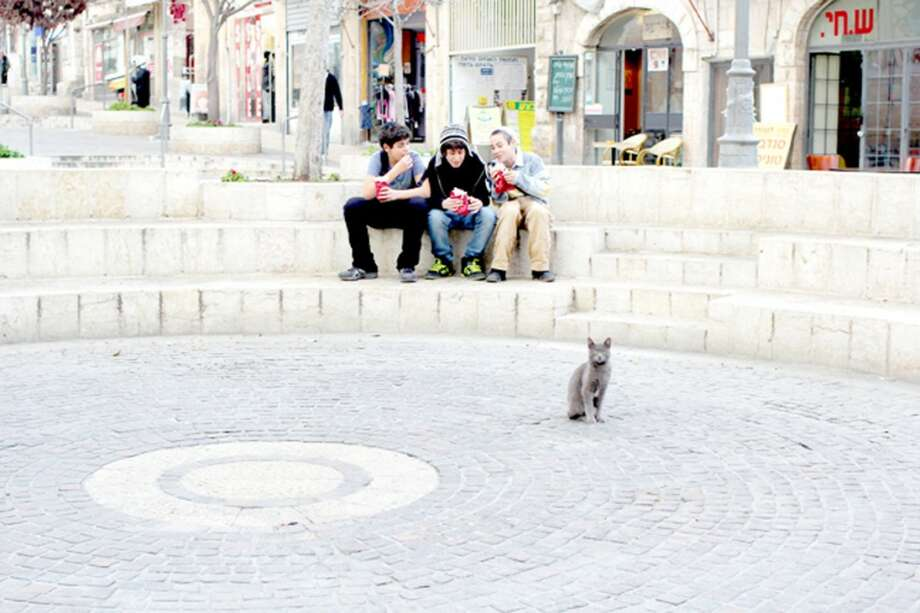 """THE CATS OF JERUSALEM: Aubrey Ann Parker's photo series, """"Ten Cats,"""" will be presented at the next Hit the Wall exhibit atL'Chayim. The photos are part of acollection from Parker's 2012 trip through Jerusalemand the West Bank.(Photo/Aubrey Ann Parker)"""