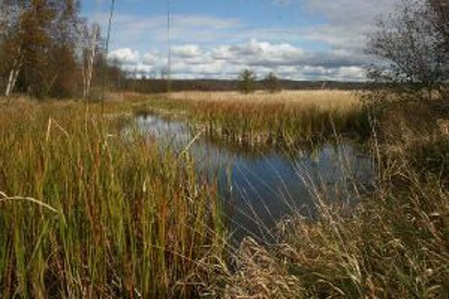 A universally accessible trail will extend nearly a mile into the Arcadia Marsh, once finished.