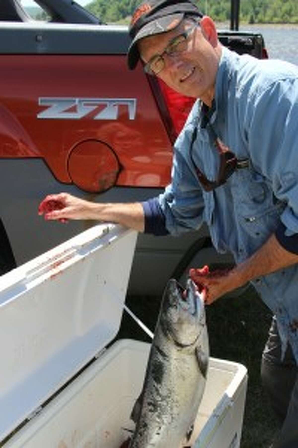 FILET OF FISH: Fred Fay pulls out a salmon to be fillet at the annual David Bihlman Memorial Fishing Tournament on Saturday. Proceeds went to Camp Quality, and caught fish were donated to hungry members of the community.