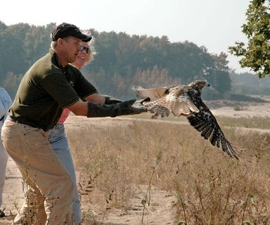 MAKING AN IMPACT: Members of the Wings of Wonder release a Red-Tailed Hawk. The group not only teaches people about local birds and other wildlife, but also helps rehabilitation of injured or sick raptors.