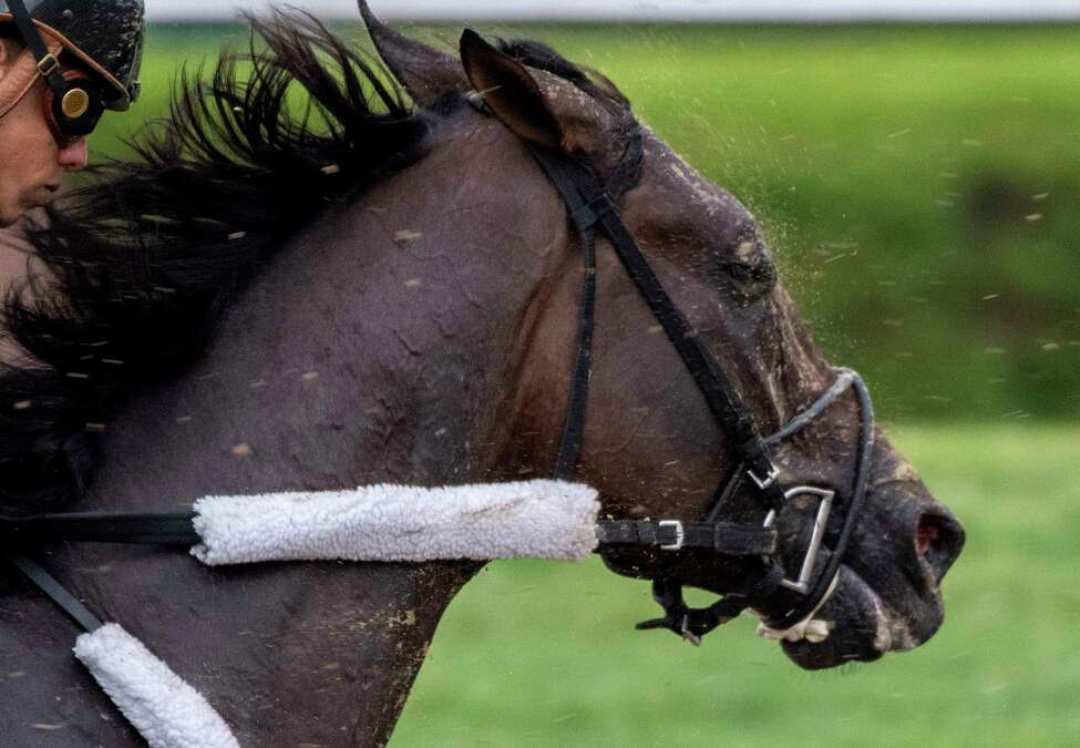 Runhappy Travers Stakes entrant Tax with jockey Irad Ortiz Jr. aboard has his final breeze on the main track at the Saratoga Race Course Friday Aug. 16, 2019 in Saratoga Springs, N.Y. Photo Special to the Times Union by Skip Dickstein