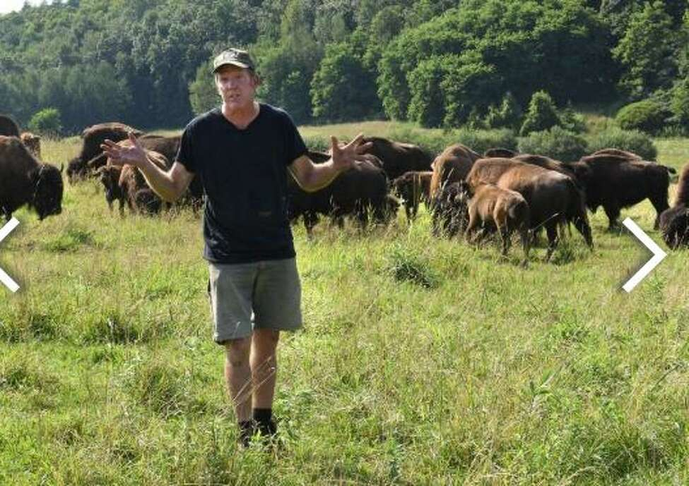 Brian Grubb talks about the bison who escaped from his Bison Island on Monday, July 29, 2019 in Sharon Springs, N.Y. About a third of his bison escaped last month.
