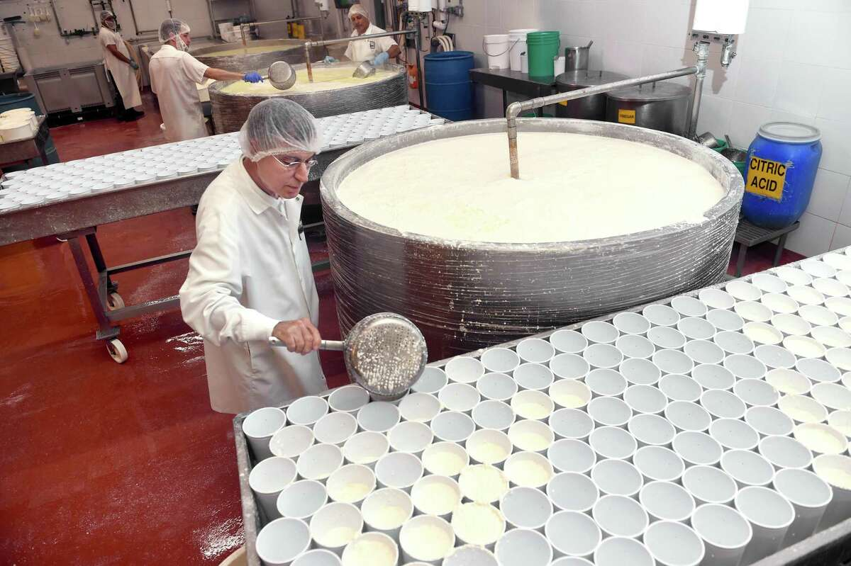 Frank Angeloni, president of Calabro Cheese Corp., scoops curds during the processing of the company's prize-winning hand-dipped ricotta cheese at the factory in East Haven.