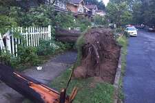 Storm damage is seen on Ryckman Avenue, Albany, on Aug 16, 2019.