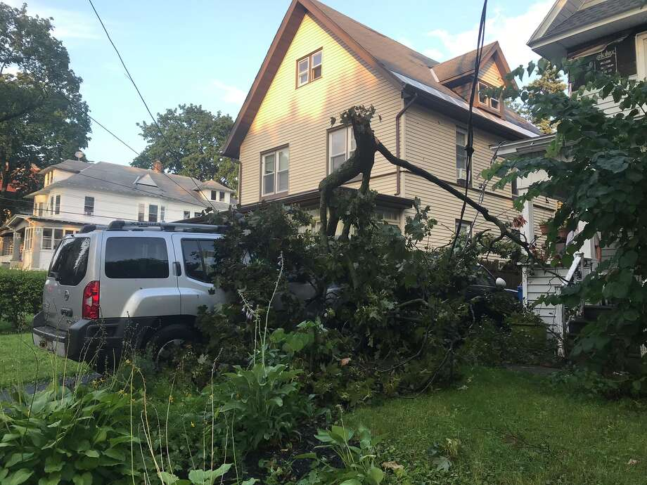 Branches from a maple tree next to S. Main Ave., Albany, fell on cars parked in the driveway. Photo: Leigh Hornbeck/Times Union