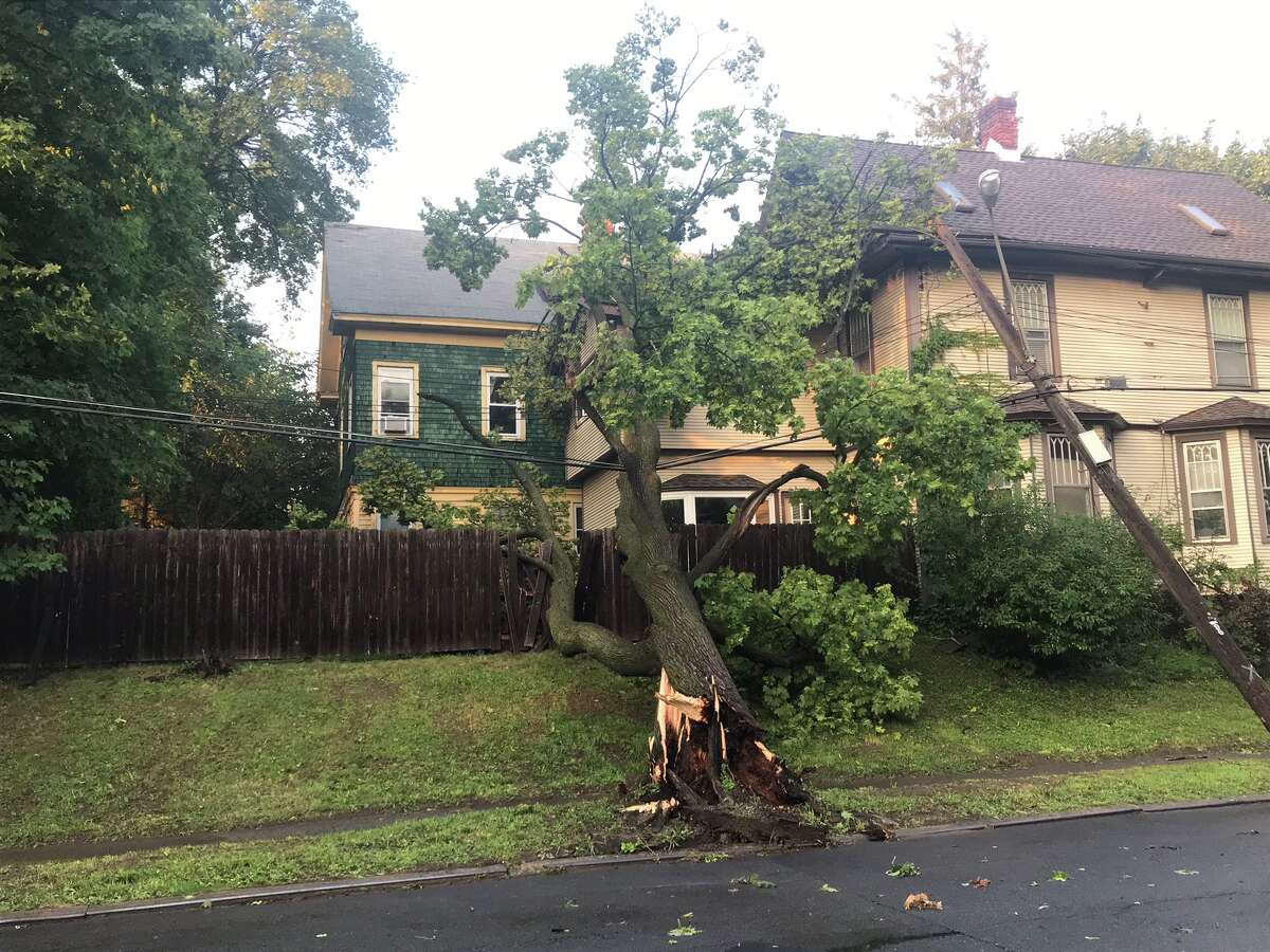 A large tree along Park Avenue in Albany snapped at its base during a thunderstorm Aug. 16, 2019 and came to rest on a house. The tree pulled wires down as it fell, also causing a utility pole to fall against the house.