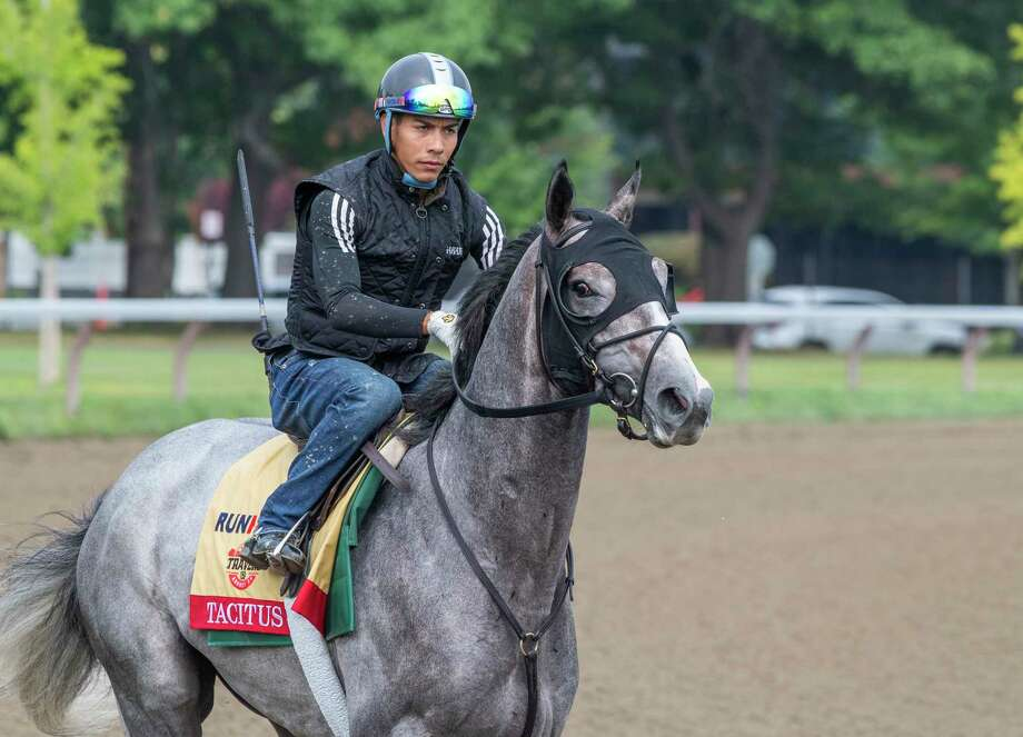 Tacitus with jockey Jose Ortiz has his final breeze before participating in The Runhappy Travers Stakes at the Saratoga Race Course Saturday Aug. 17, 2019  in Saratoga Springs, N.Y. The Travers will run next Saturday at the Spa.  Photo Special to the Times Union by Skip Dickstein
