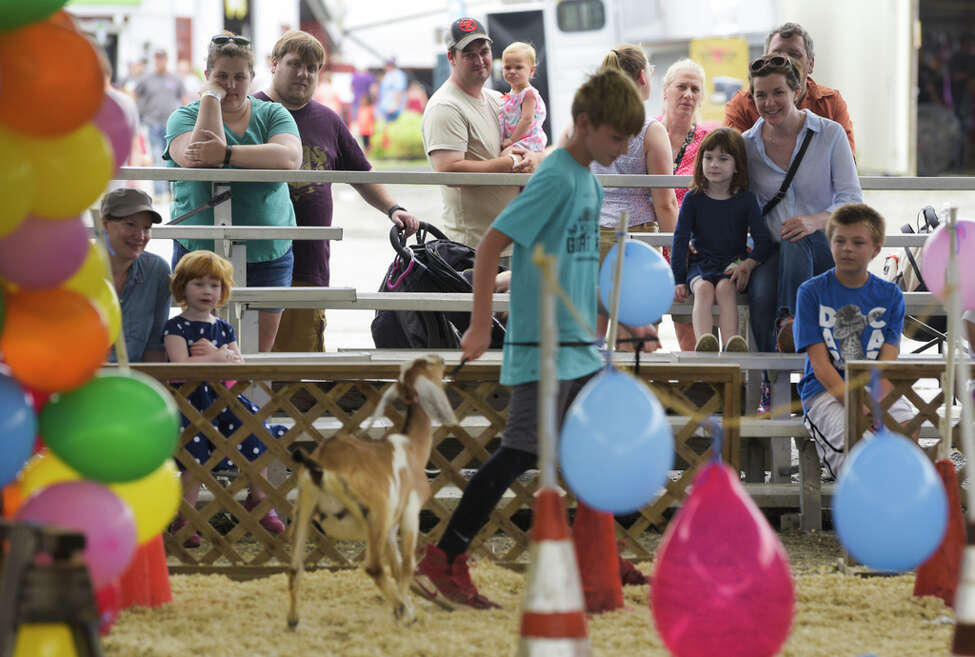 Families watch the goat obstacle course competition at the Altamont Fair on Sunday, August 18, 2019, in Altamont, N.Y. (Paul Buckowski/Times Union)