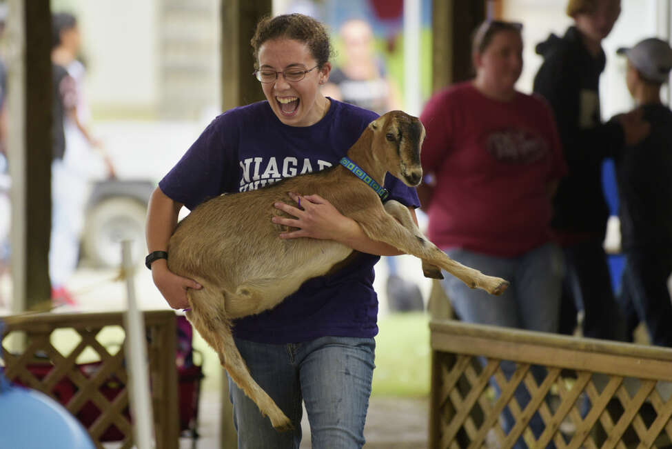 Kelley Doolin of Berne decides to carry the goat,