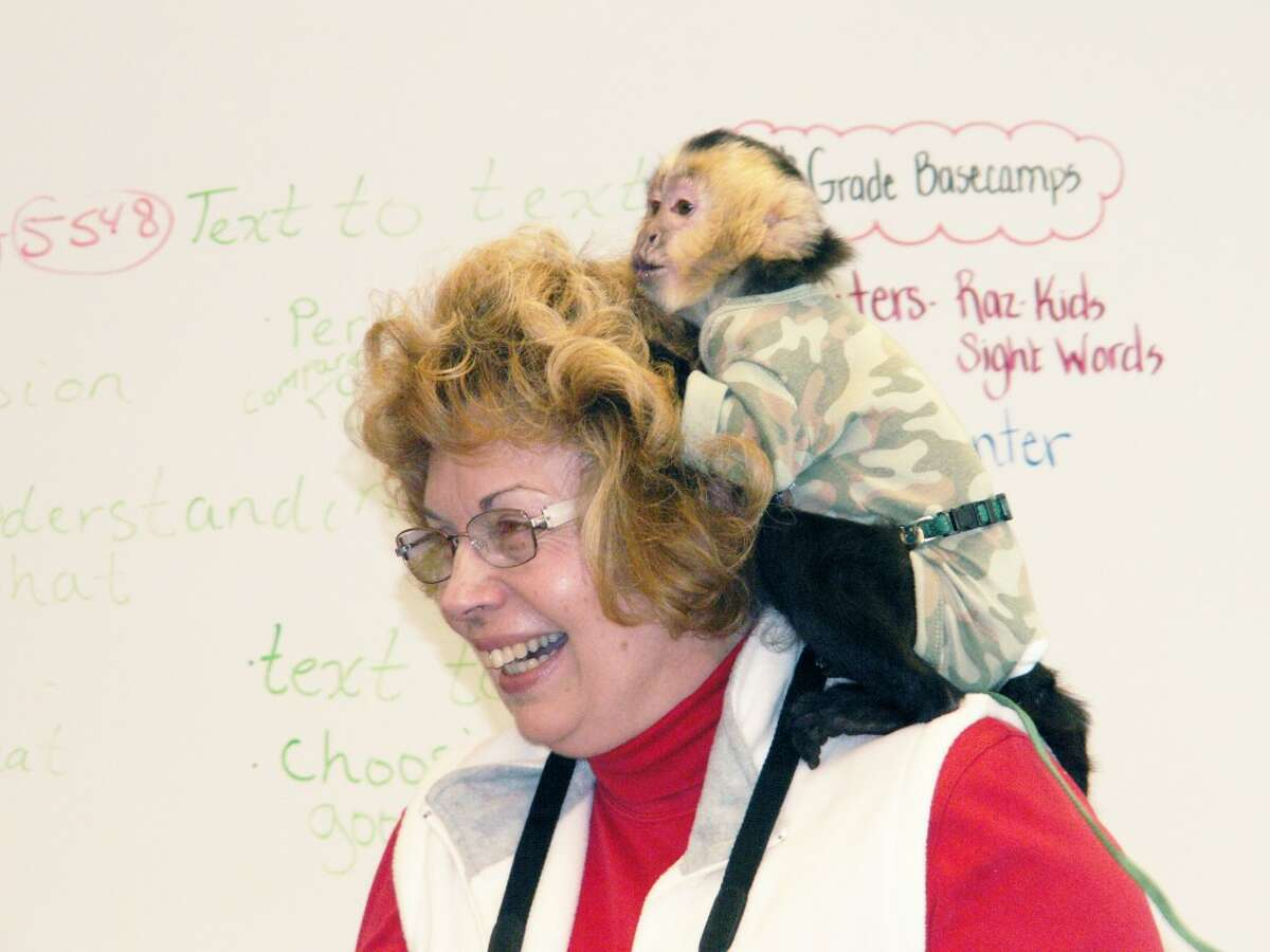 """Monkey hugs: """"Seymour loves the ladies."""" Kirk Elya tells the class as Pam Bloom got her own gift from Seymour, bunches of hugs and love."""
