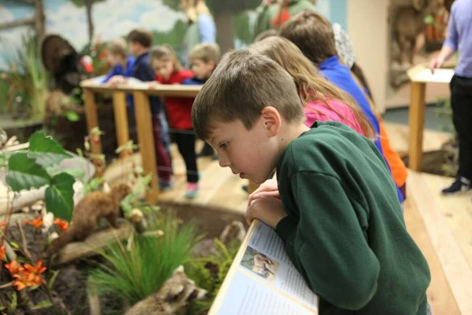 Students on a school trip browse the Michigan exhibit at the Card Wildlife Education Center in Big Rapids. The center, along with museums and zoos, offer fun options for trips throughout spring break. (Herald Review file photo)