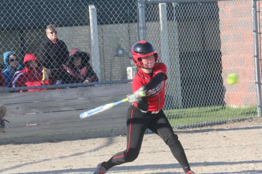 SUMMER PLAY: Reed City's softball team is involved in summer action this year.