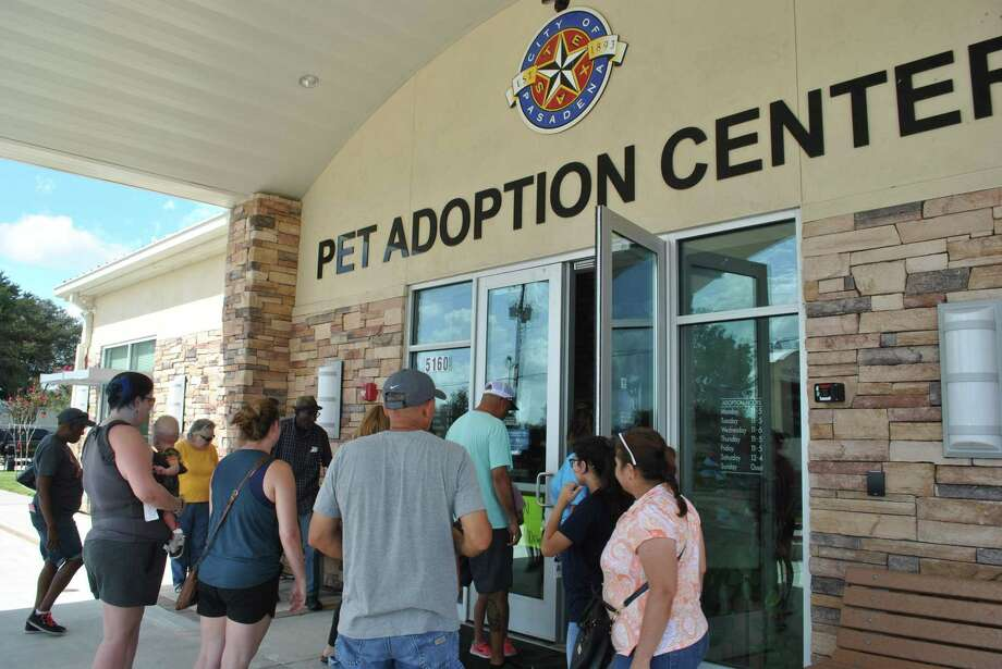 Dozens of families gathered at the Pasadena Animal Shelter, 5150 Burke Road, in search of the newest member of their household on Saturday. 61 cats and dogs found forever homes thanks to the fifth annual Clear the Shelters event. Photo: Houston Chronicle Photos By Tyler Johnson