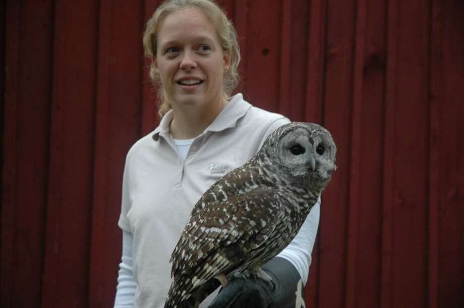 On Aug. 24 from 2 p.m. to 4 p.m. the Institute for American Indian Studies located on 38 Curtis Road in Washington Connecticut is welcoming staff from the Sharon Audubon Center for a program featuring live birds of prey. Photo: Contributed Photo