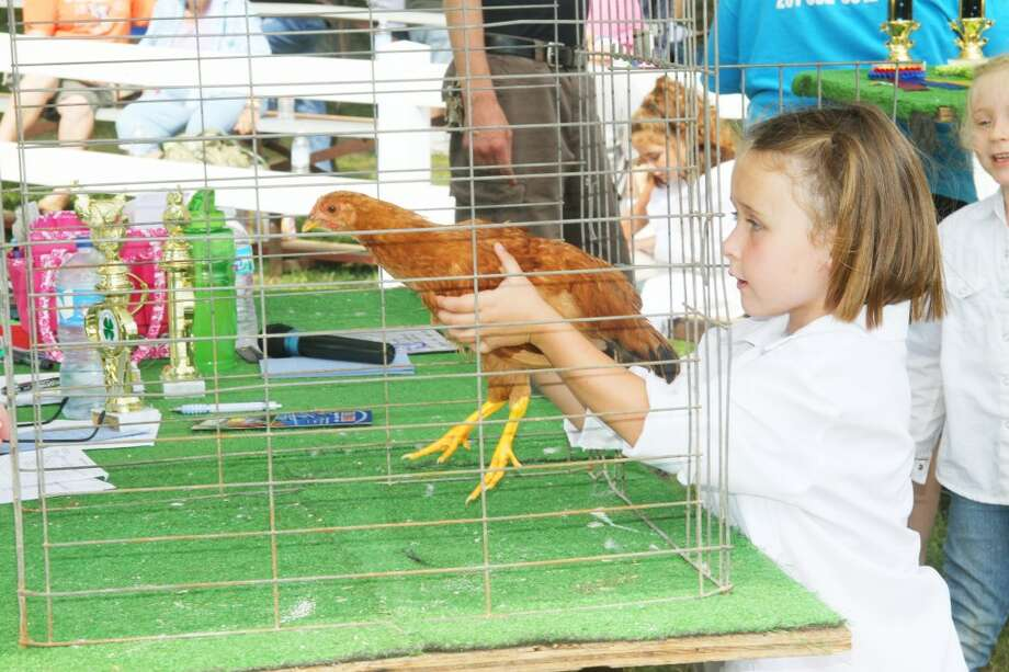 Osceola Fair: A child prepares to show her chicken during last year's Osceola County 4H-FFA Fair. This year, the fair will take place from July 29 through Aug. 3. (Herald Review file photo)