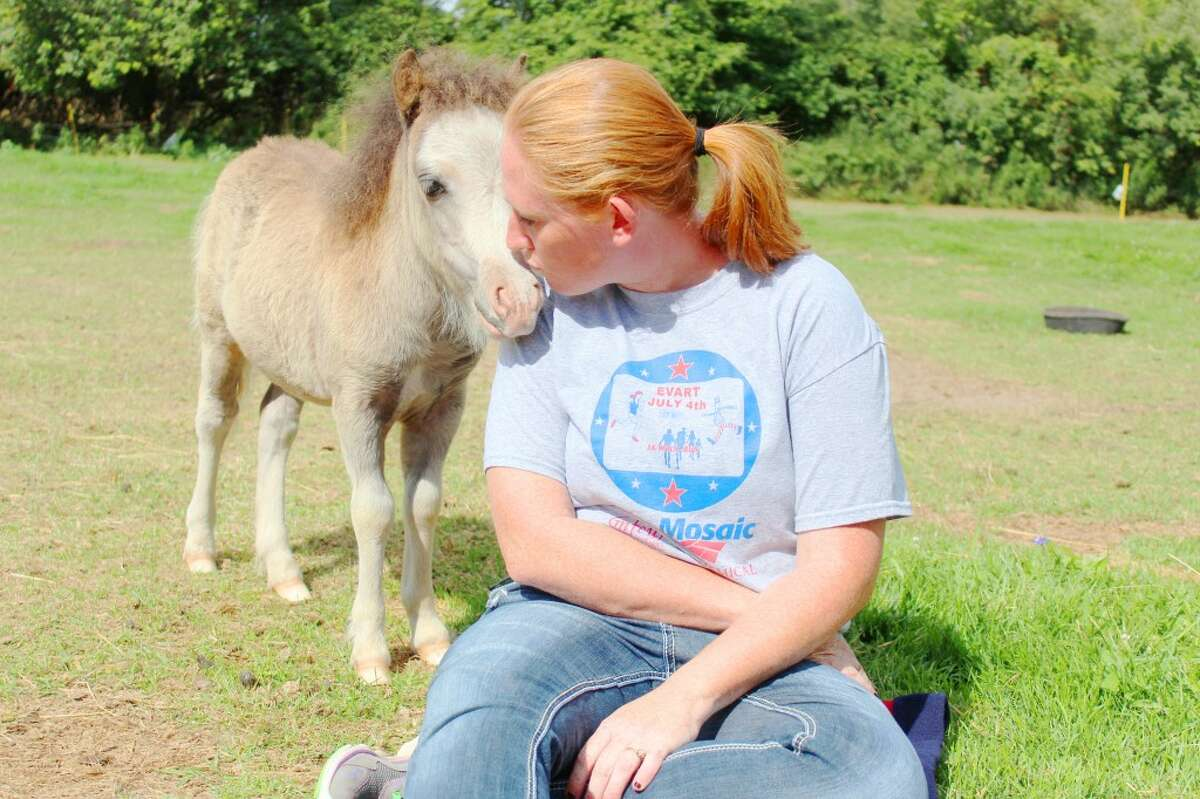 Kelly Hubbard, of Evart, gives kisses to Amos, a three-month-old miniature horse owned by her mother, Vicki Cushman. The horses are docile, friendly, playful and a great pet for small children. Amos enjoys sneaking up behind people and bumping them with her nose.
