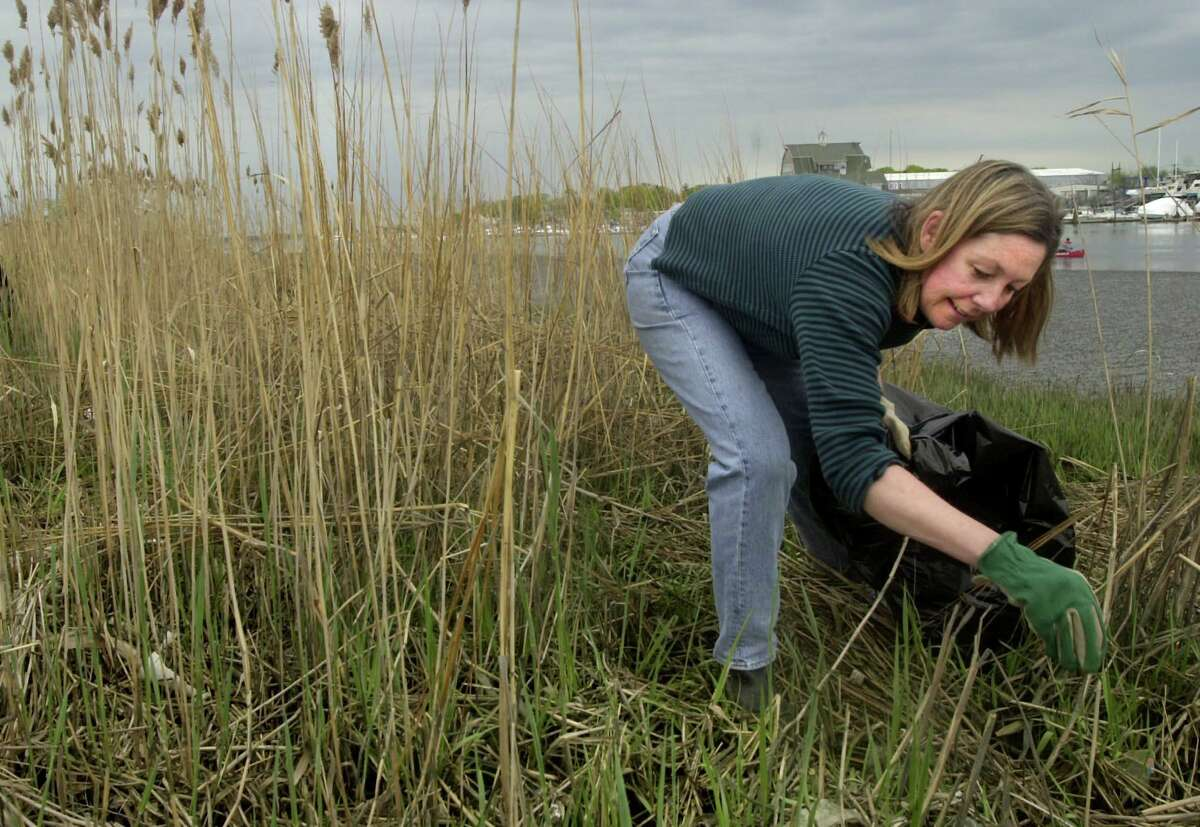 Martha Weiss of Stamford picks up trash, including styrofoam, in the reeds during Save the Sound's Earth Day Shoreline Clean-up in South Norwalk. The city banned styrofoam products effective next April.