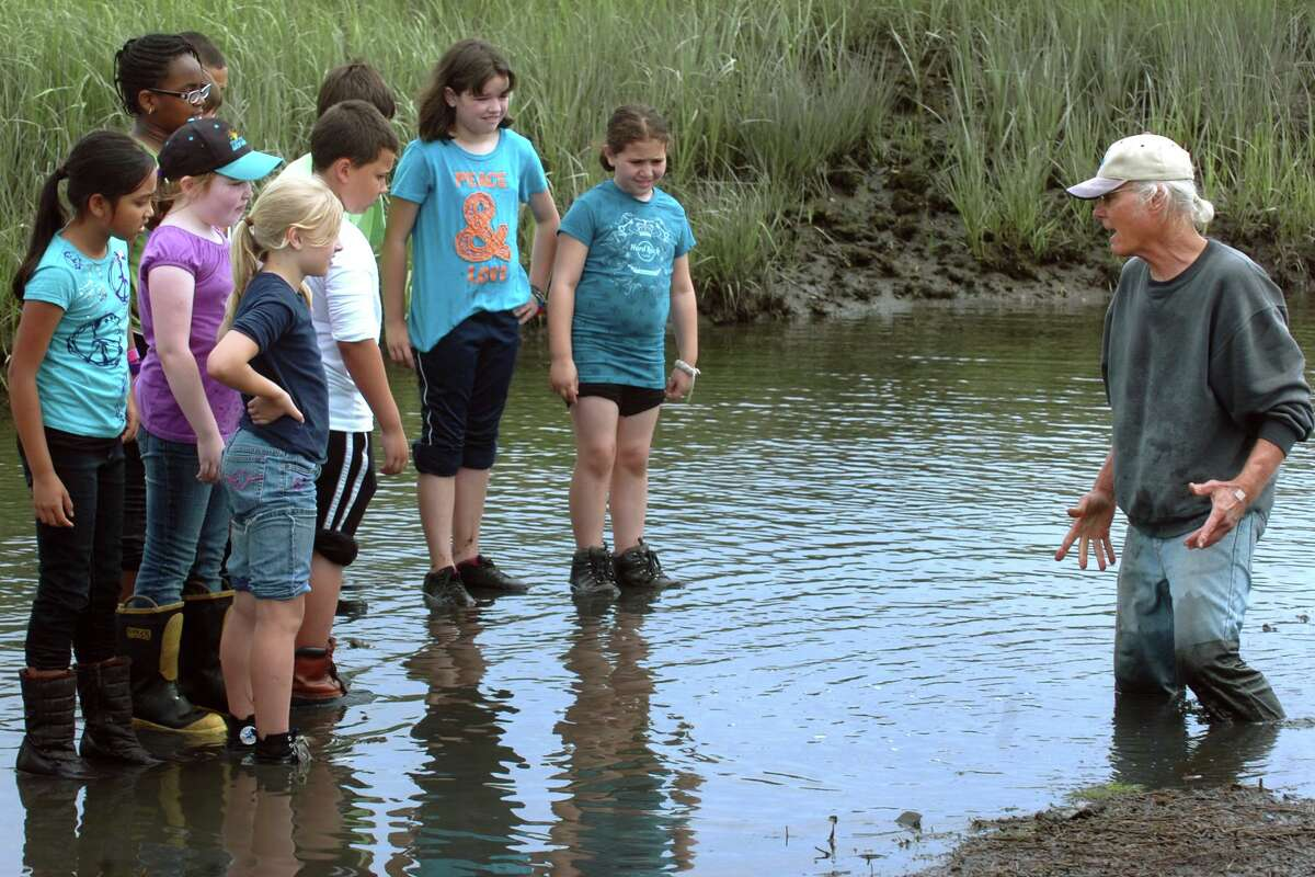 Richard Heiden leads a group of fourth graders from Stratford Academy on a tour of the Great Meadows marsh in Stratford, Conn. June 21st, 2011.
