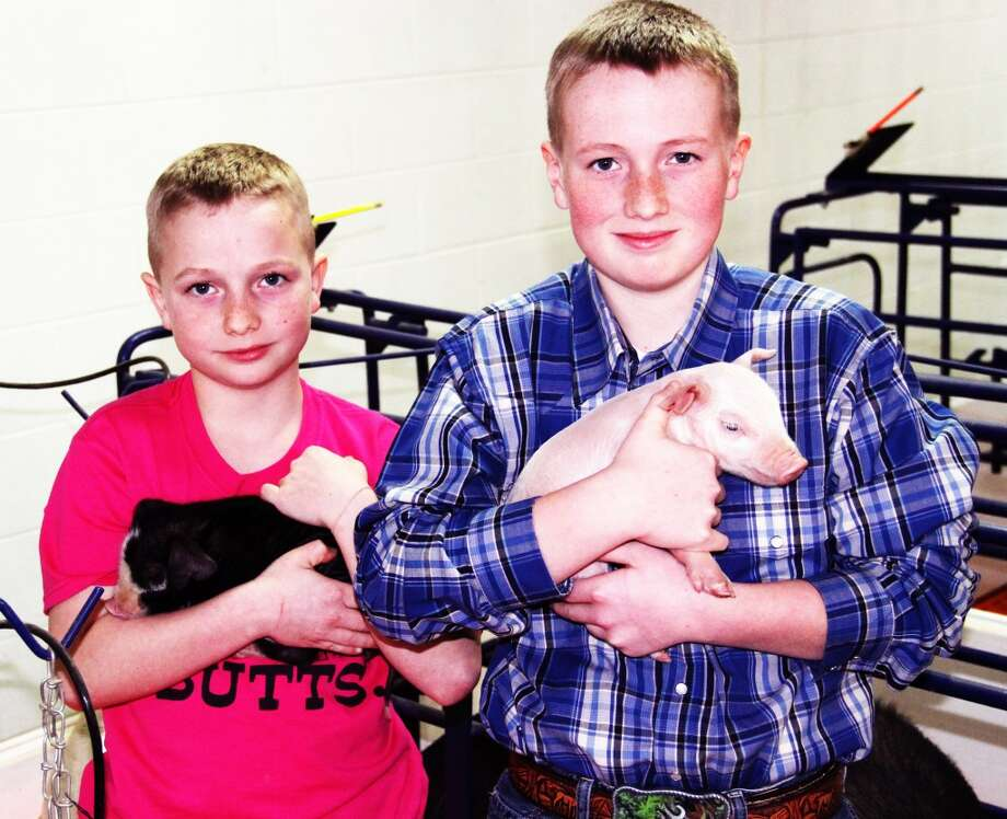 PART OF THE FAMILY: Wyatt, 10, and Jacob, 12, hold newborn pigs that will be sold in the fourth annual Boyd Show Pig sale on April 6 at the farm, located at 1902 100th Ave. in Evart.