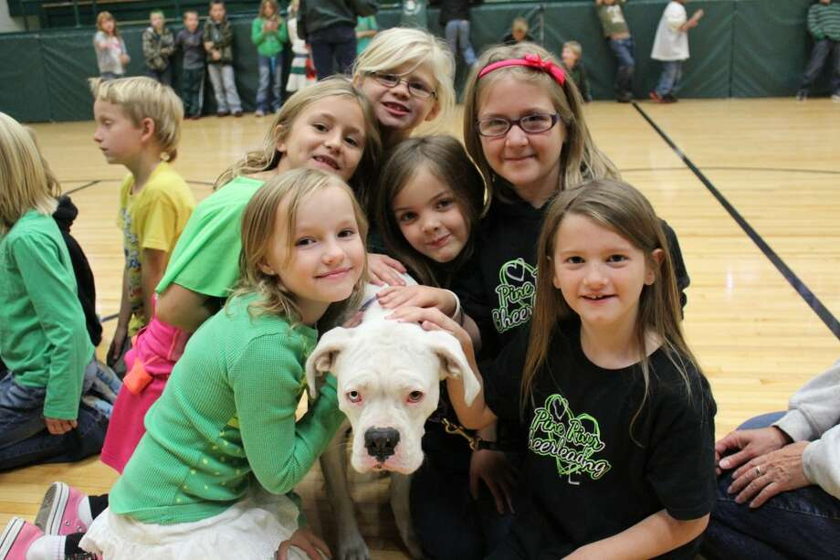 FURRY FRIEND: LeRoy Elementary second-grade students hug Lexie, a white boxer. Lexie serves as a therapy dog in the Riley Mackenzie fund. (Herald Review photo/Sarah Neubecker)
