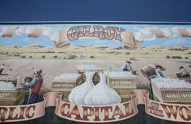 A large mural honoring Gilroy's garlic history is seen in a parking lot along Monterey Road in downtown Gilroy, Calif. Wednesday, July 31, 2019.