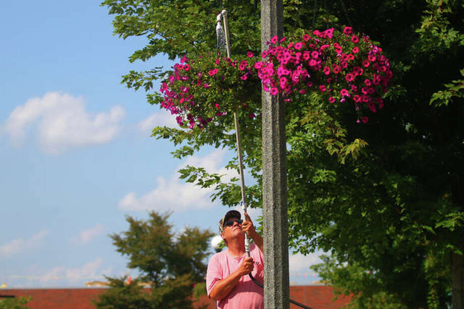 Terry Chumley, city hall and Central Park superintendent, waters petunias in hanging baskets Monday in downtown Jacksonville. The flowers have been needing water twice a day, Chumley said. The weather has been fairly dry in west-central Illinois, except for a smattering of storms in the past week. More showers and thunderstorms are possible through Thursday, with highs in the 80s. Photo: Rosalind Essig | Journal-Courier