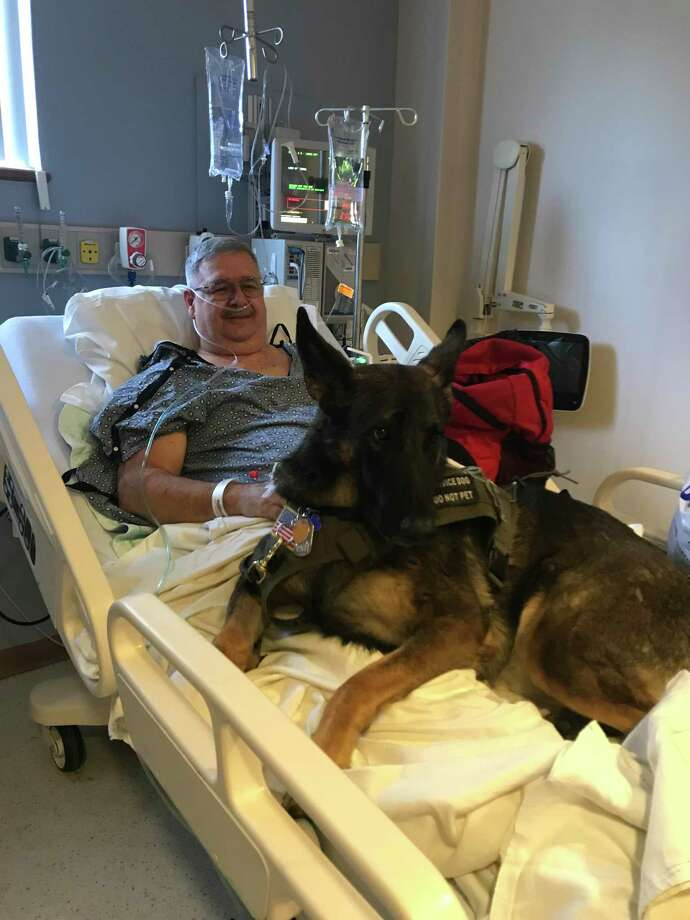 Charlie Amico and his medical service dog, Harry. Photo: Submitted Photo By Charlie Amico