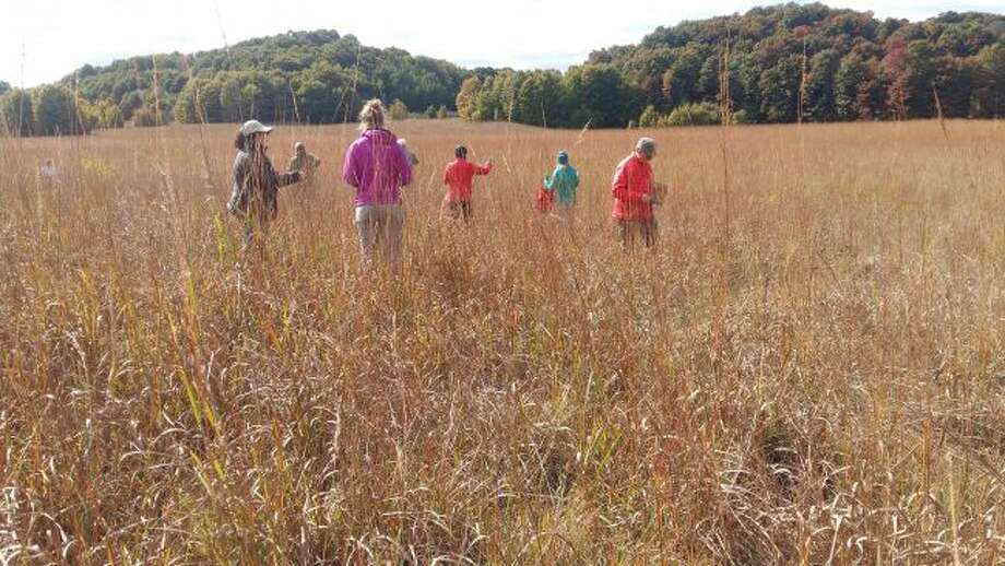 The Grand Traverse Regional Land Conservancy and Plant It Wild will co-host several programs on meadows. (Courtesy Photo/Angie Lucas)