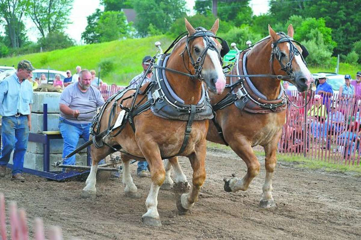 The horse pull event will return to Bear Lake Days. It will begin at 5 p.m. on Friday at Correct Compression on U.S. 31. (News Advocate File Photo)