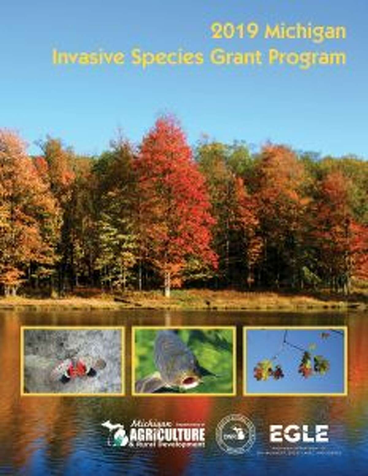 Information on the Michigan Invasive Species Grant Program, including the grant handbook, is available at Michigan.gov/Invasives. (Courtesy photo)