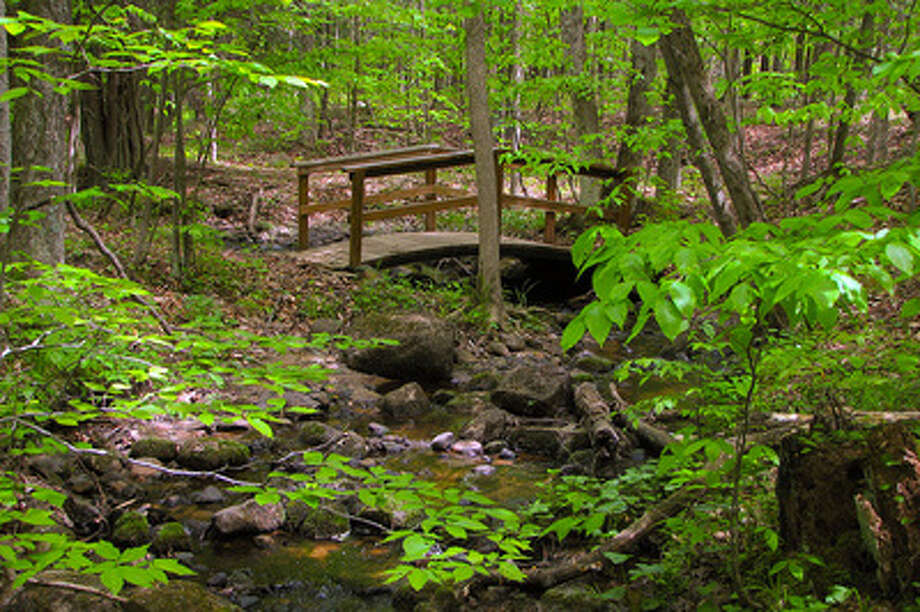 Campers can spend time with nature as they cross bridges and hike with friends. An afternoon on a wooded trail is one of many attractions that Brower has to offer. (Courtesy photo)