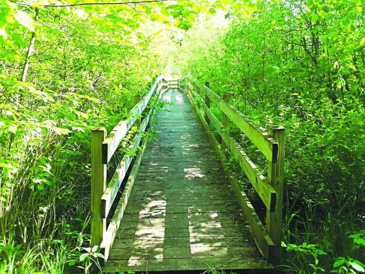 The trail begins by crossing First Creek. (Robert Myers/Pioneer News Network)