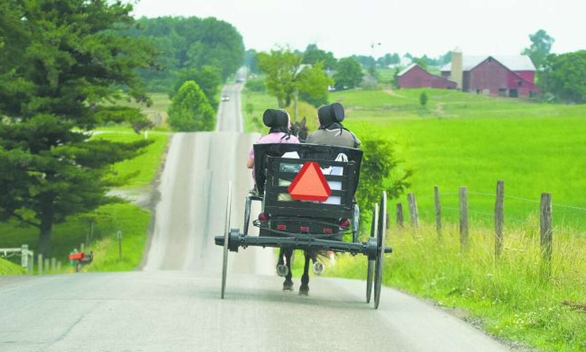 Local citizens group, Signs for Safety have requested the Manistee County Road Commission install horse-drawn vehicle warning signs. (Courtesy photo)