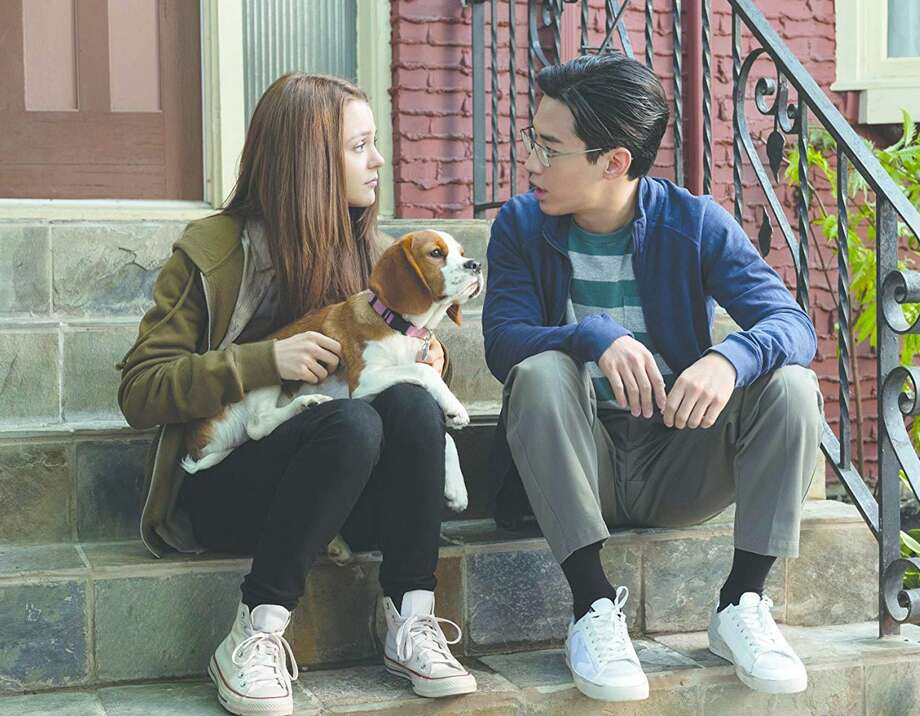 "Kathryn Prescott and Henry Lau in ""A Dog's Journey."" (Universal Pictures) Photo: Universal Pictures, HO / TNS / TNS"